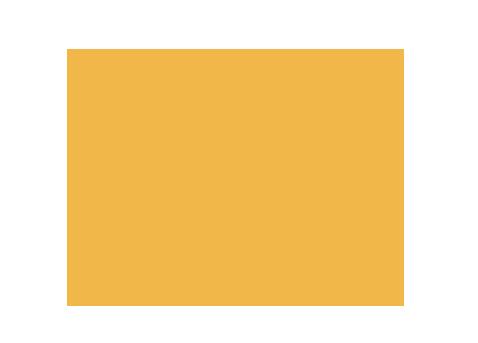 Dr. TJ Ahn